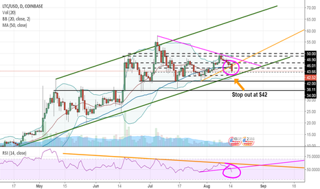 LTCUSD: Litecoin could not hold the lines! Now what?