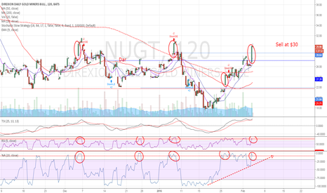 NUGT: NUGT Miners nearing a top?