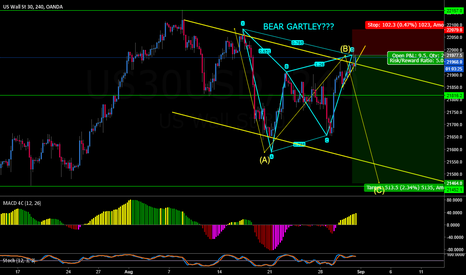 US30USD: US30 COULD THIS BE A BEAR GARTLEY???