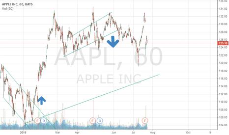 AAPL: Apple flags