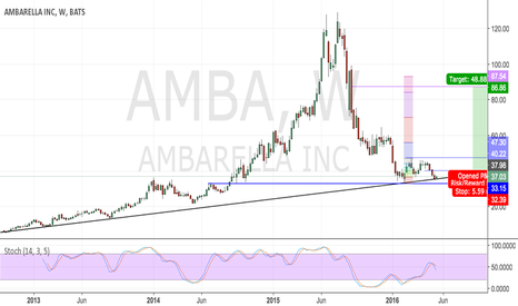 AMBA: Ambarella Support?... Risk/Reward is worth a Go (Pro)