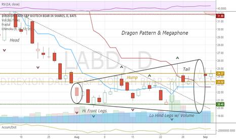 LABD: Dragon with megaphone pattern