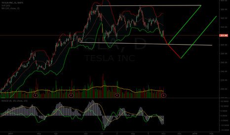 TSLA: $TSLA potential short term chart path