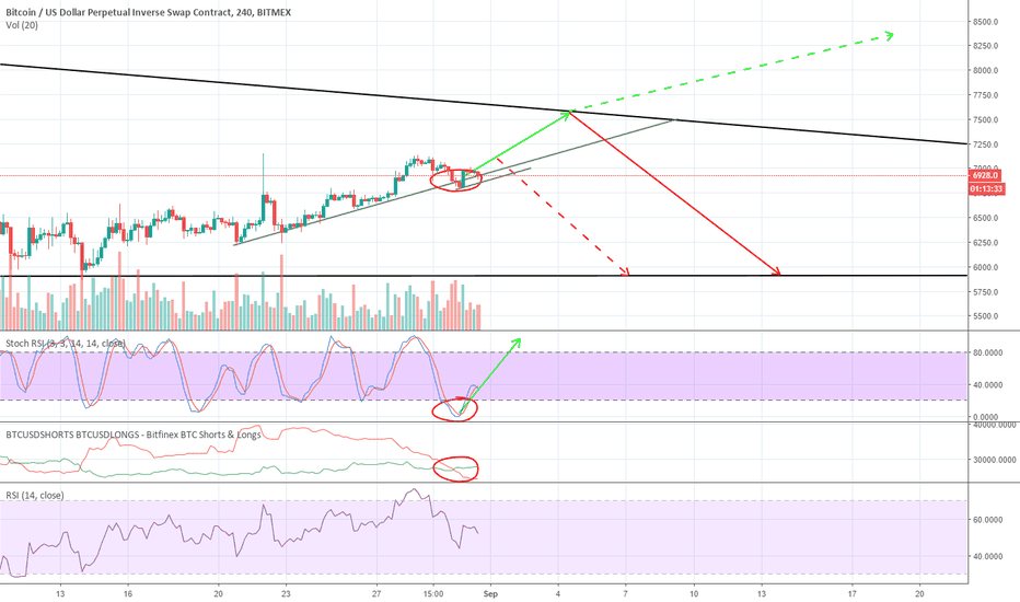 XBTUSD: Not time to test the bottom yet!