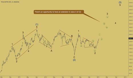 TSLA: TESLA - wave 3 of (3)