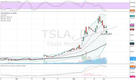 TSLA: TSLA at support