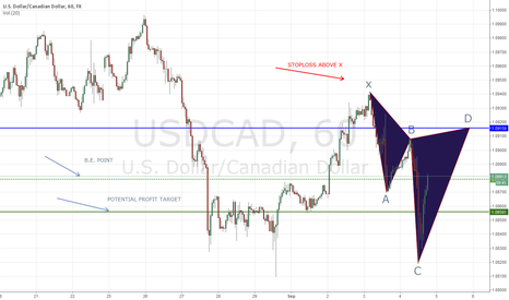 USDCAD: Potential Bearish Cypher