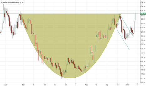 TORNTPOWER: torrent power cup and handle