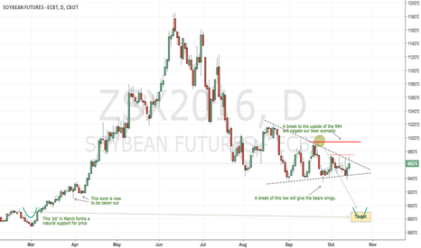 ZSX2016: CBoT soybeans keeps its bear scenario for now