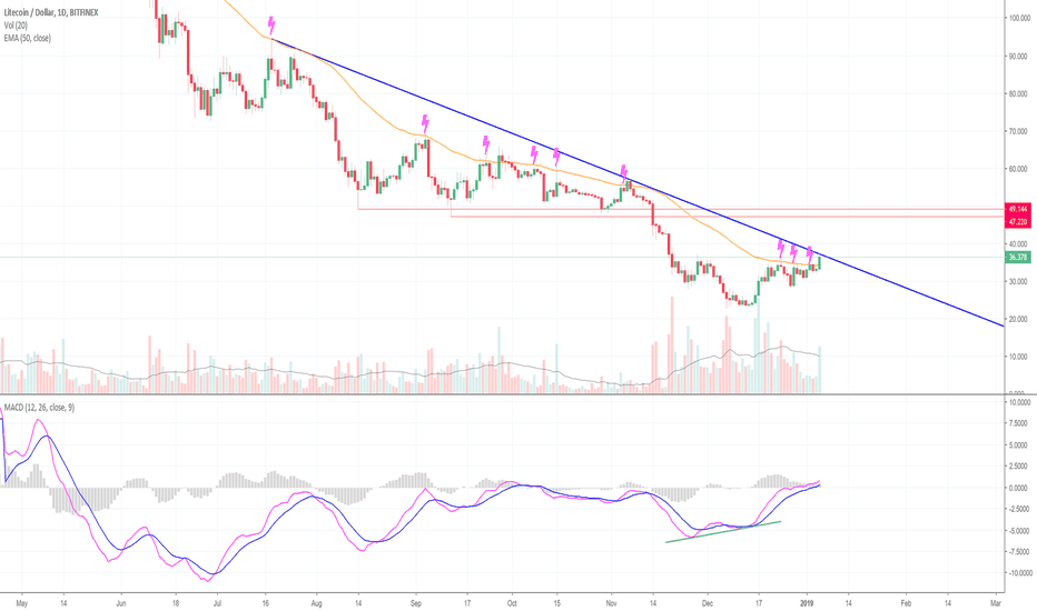 LTCUSD: Pay Attention! Litecoin May Be Leading The Market! (LTC)