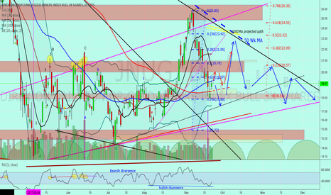 """JNUG: Jnug to Gold """"Short term bounce before end of year drop"""""""