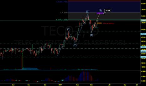 TECO2: TECO2 - CONTEO Y POSIBLE OBJETIVO