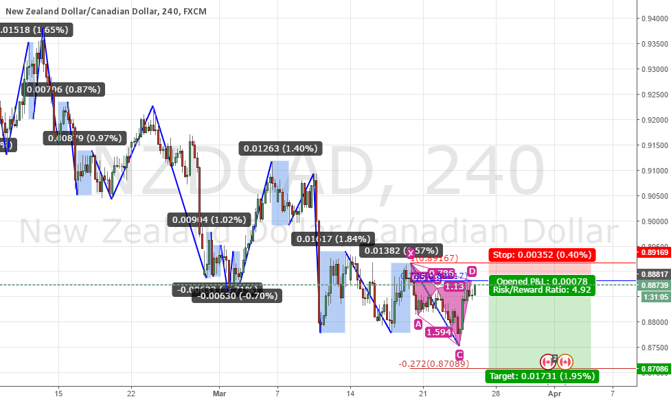 nzdcad cypher pattern