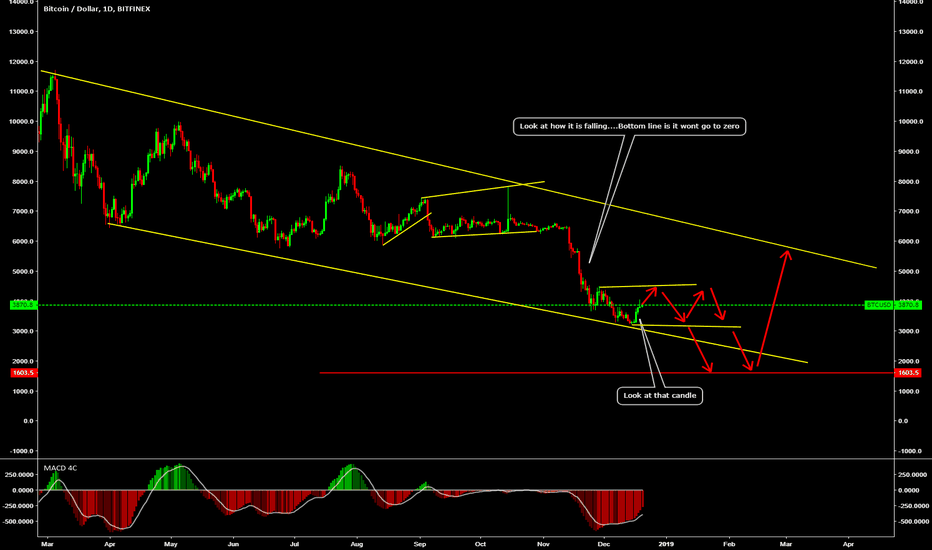 BTCUSD: One More down..
