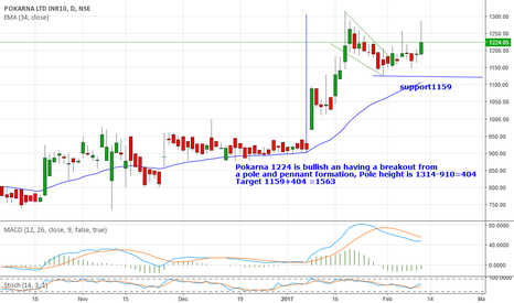 POKARNA: Pokarna 1224 is bullish an having a breakout from pole& pennant