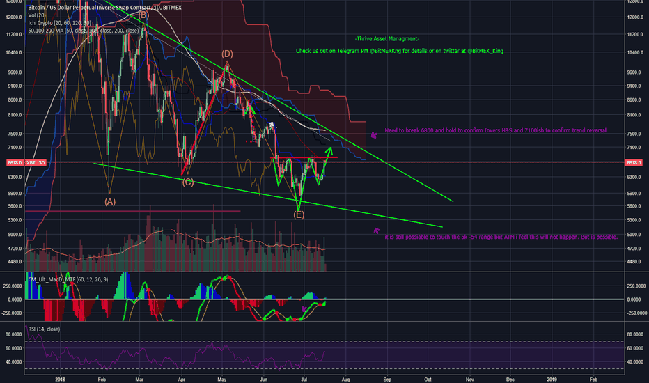 XBTUSD: BTC Long  ( Strat of the Reversal to new ATH!!!!!)