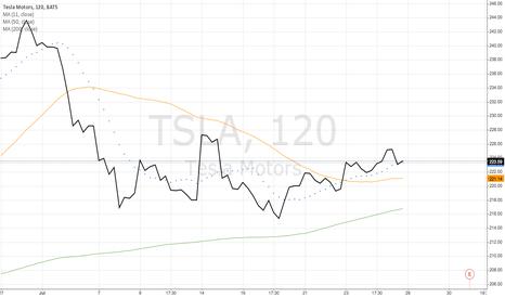 TSLA: Tesla Motors (TSLA)