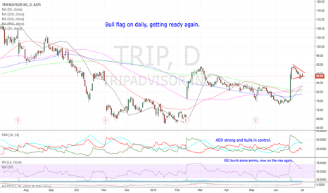 TRIP: Bull flag on daily