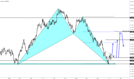 SUGARUSD: Sugar looking sweet on the Daily