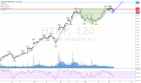 HZNP: HZNP   Nice Cup and Handle - time to rise . . .