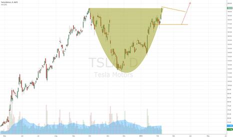 TSLA: TSLA Daily Analysis 2/10/2014