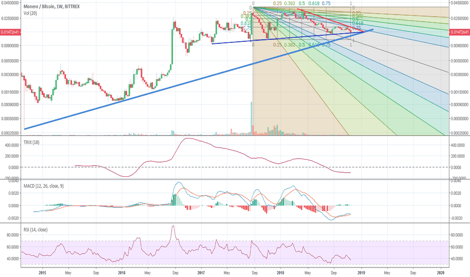 XMRBTC: XMRBTC indicators show that support is strong