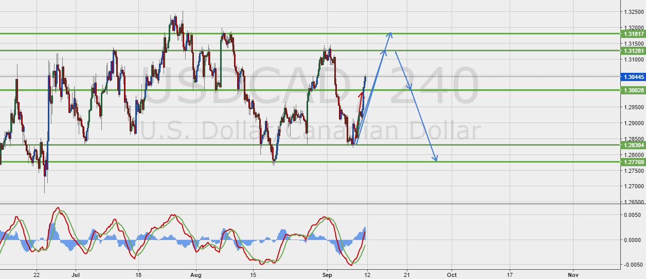USDCAD Up before going Down