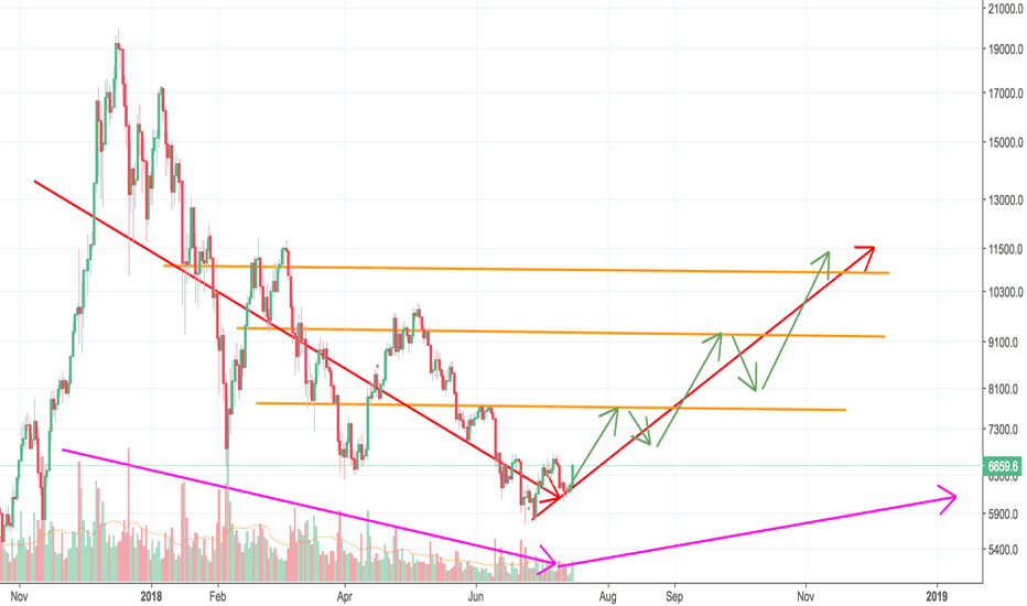 BTCUSD: We have a bright future in next half year