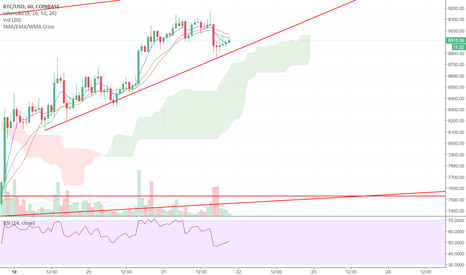 BTCUSD: BTC: Holding the line + a BIG pivotal test soon