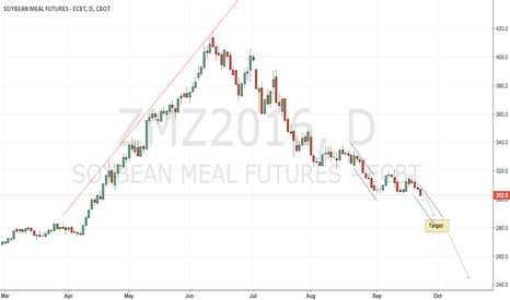 ZMZ2016: CBoT soyameal unchanged short