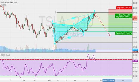 TSLA: Butterfly Pattern