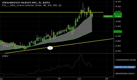 ONVO: Still looking like it wants