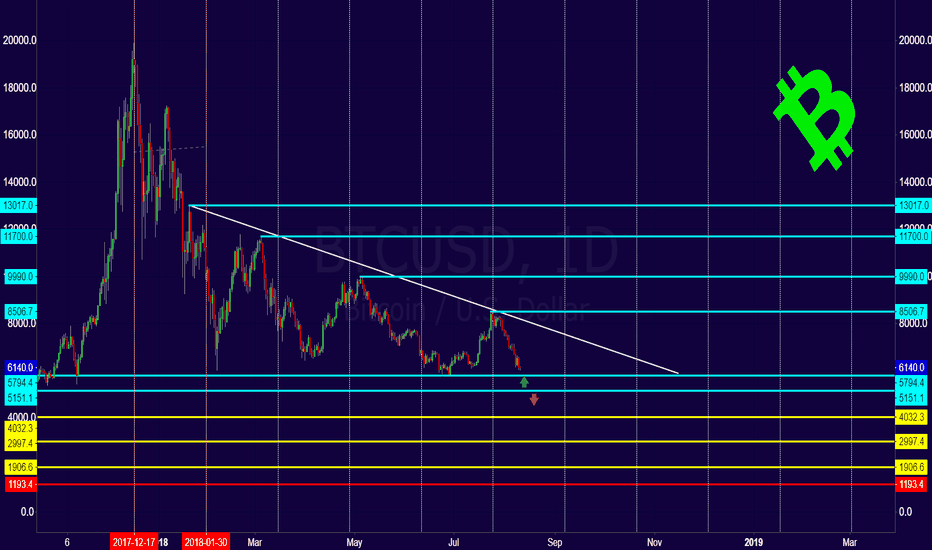 BTCUSD: BTC What Your available options?