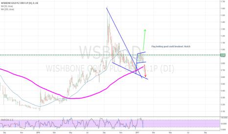 WSBN: WSBN LONG