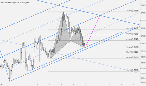 NZDUSD: NZDUSD: Bullish Gartley Comletion At Key Level
