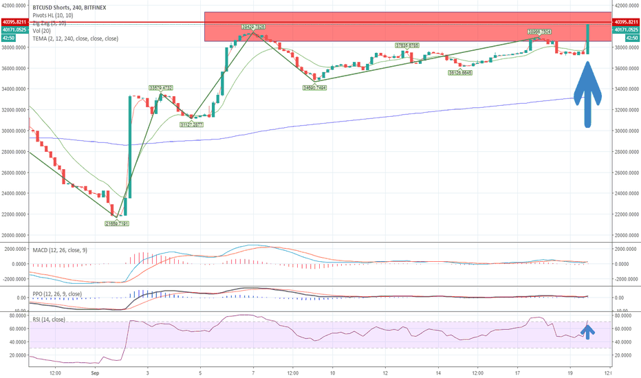 BTCUSDSHORTS: BIG SHORT ACCUMULATION