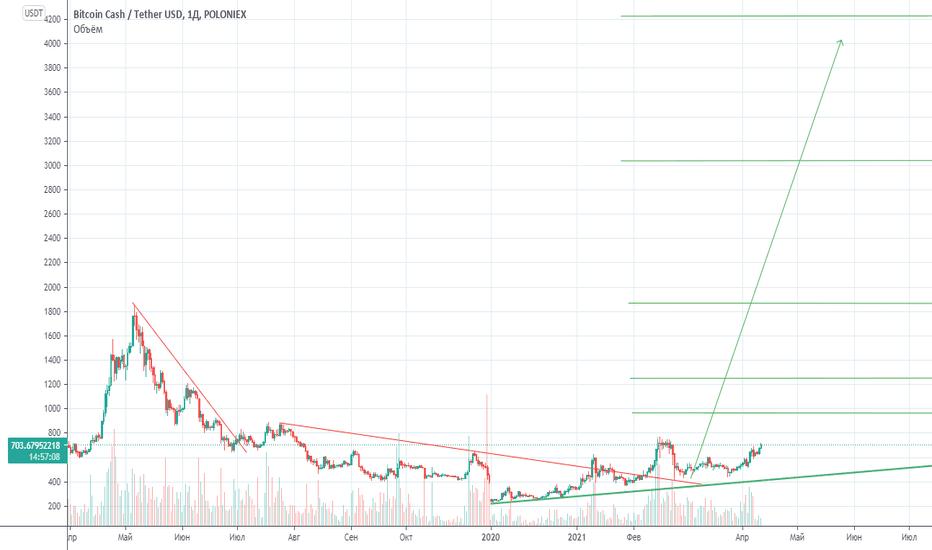 bitcoin cash ath)