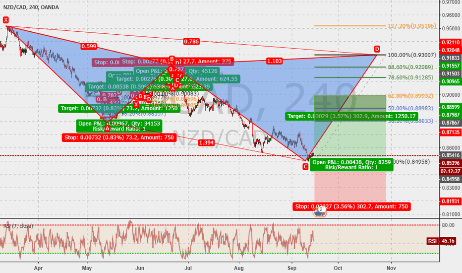 NZDCAD: NZDCAD 240m : cypher in the make