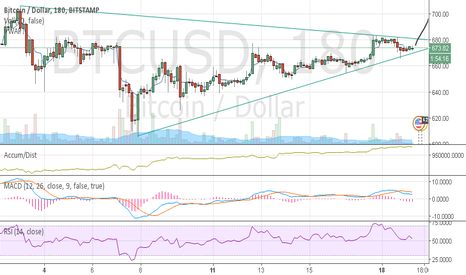 BTCUSD: LONG BTC and a BULL Pennant