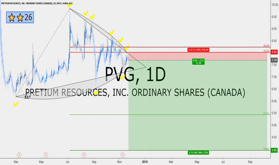 PVG: PVG 11 RRR short