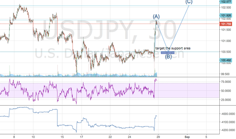 USDJPY: USD/JPY : Wave Theory??