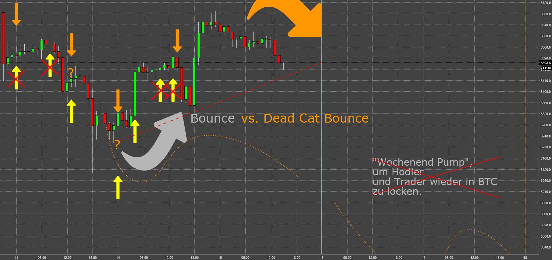 BTC: No Way Out (X) - Dead Cat Bounce an der 6k Marke II