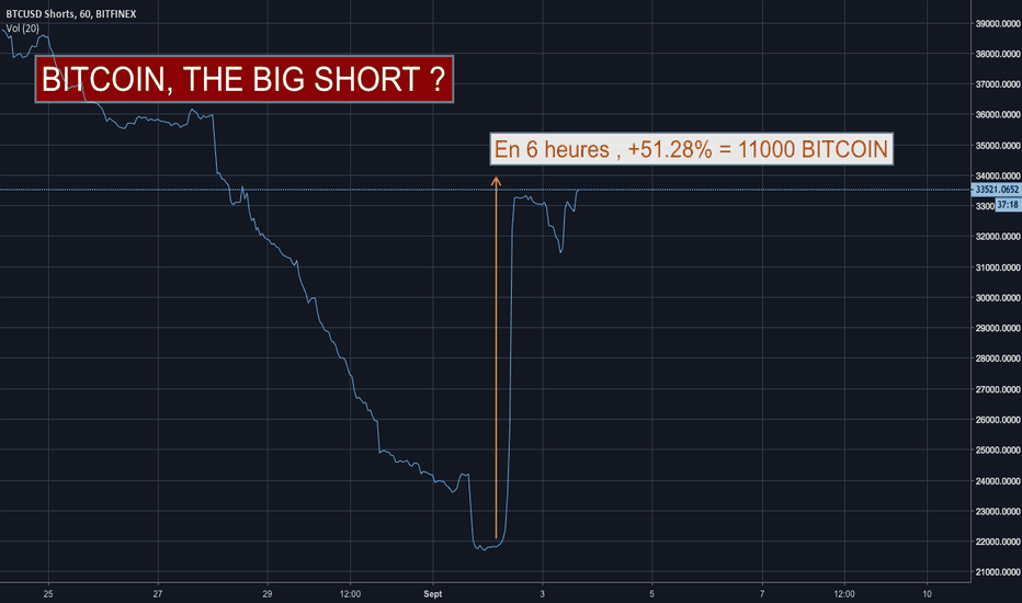 BTCUSDSHORTS: Bitcoin, the big short ?!