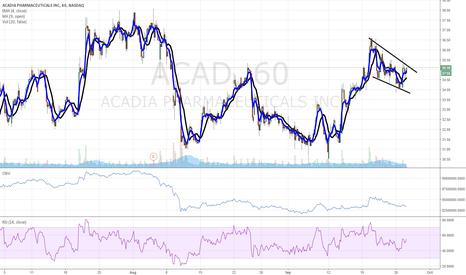ACAD: $ACAD bull flag breakout