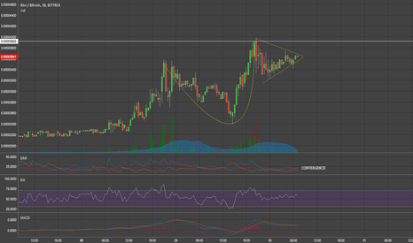 RISEBTC: $RISE FORMING HEAD & SHOULDERS,LONG OPPORTUNITY —WAIT TO CONFIRM