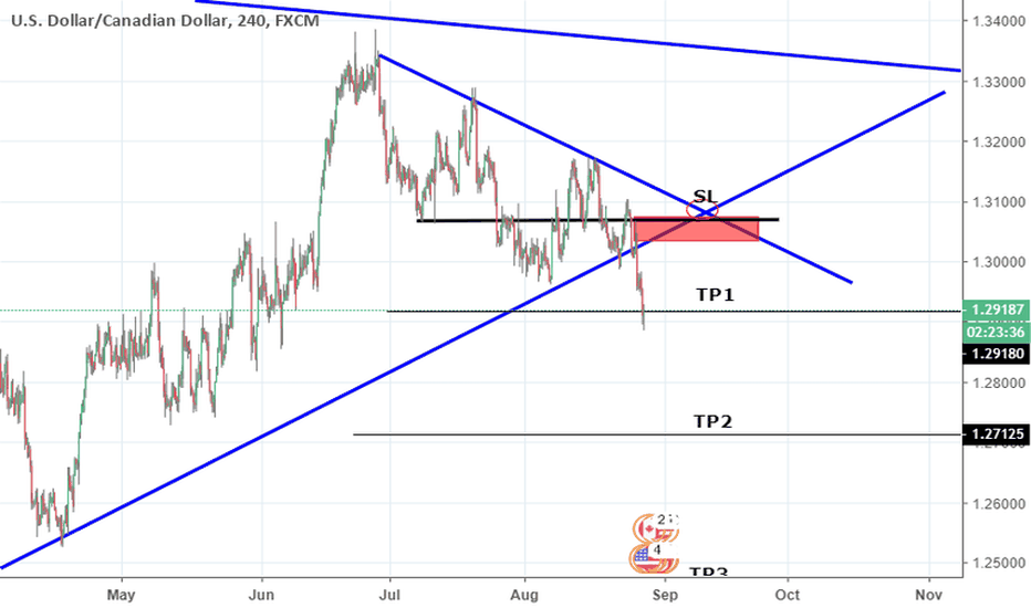 USDCAD: USDCAD 5000 PIPS POSSIBLE