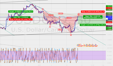 USDCAD: Cypher