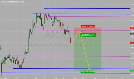 AMX: AMX H1