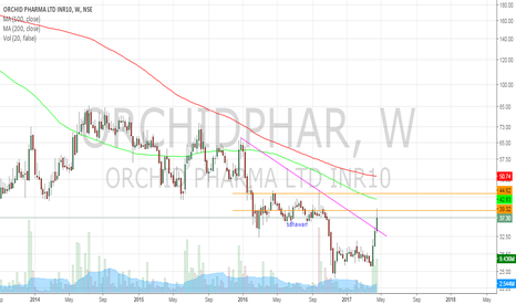 ORCHIDPHAR: Turnaround Orchid pharma