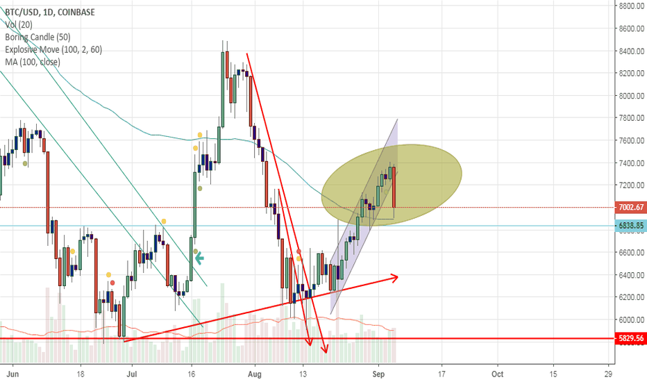 BTCUSD: Bitcoin dead cat bouning caused 487 point crash..